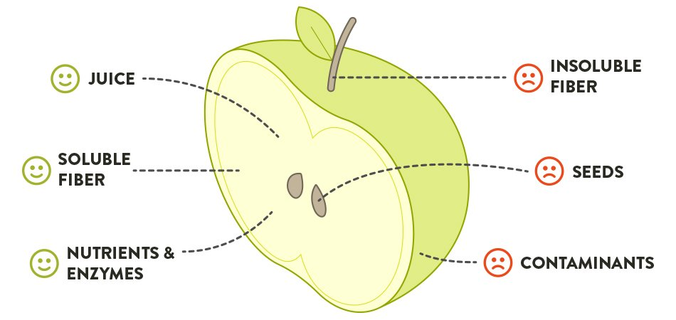What makes up a whole fruit diagram